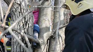 شاهد: قوات الطوارئ تتدخل لإنقاذ طفلة علقت ساقها بين جذعي شجرة في المجر