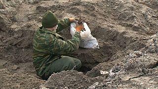 العثور على رفات مئات الأشخاص أعدموا خلال الحرب العالمية الثانية في بيلاروسيا