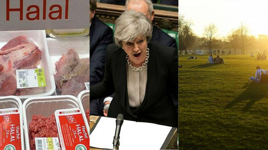 Brexit latest and religious slaughter | Europe briefing