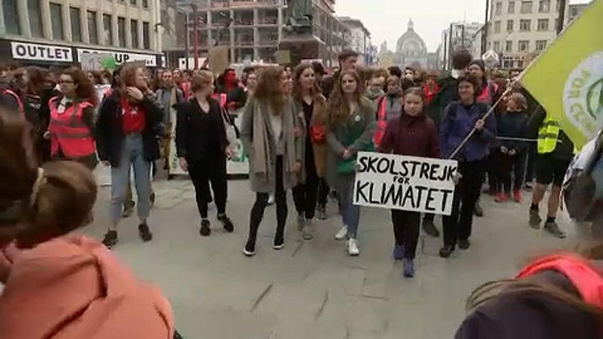 Studie: Populismus gefährdet Klimaschutz