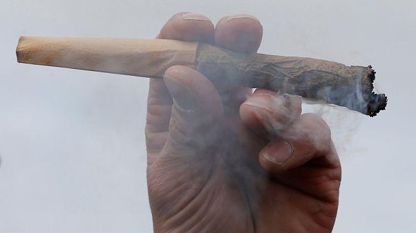 سويسرا ربما تسمح لخمسة آلاف شخص بتدخين الماريغوانا