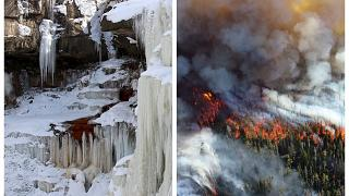 В Европе горят леса, пока Америка замерзает