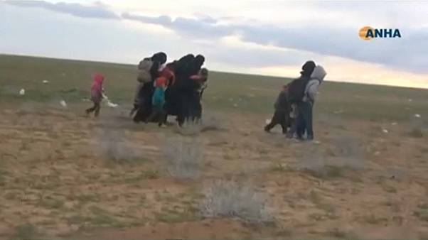 IS-Kämpfer in Syrien sollen sich ergeben haben