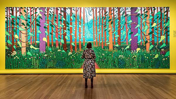 Hockney — Van Gogh: The Joy of Nature