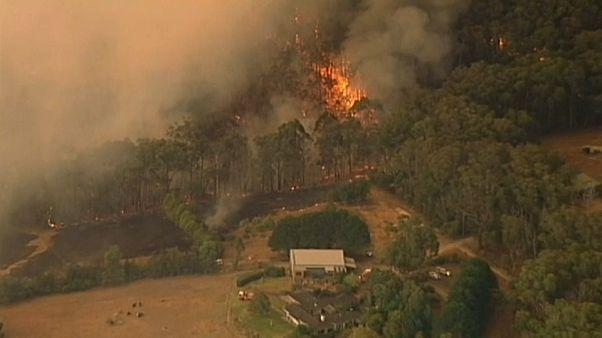 شاهد: حرائق غابات تستعر في أستراليا