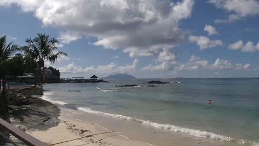 Korallneveldék a trópusi zátonyok pusztulása ellen