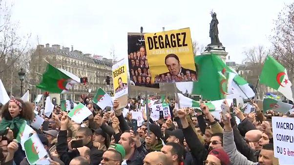 Manifestazioni contro Bouteflika anche a Parigi e Londra