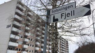 Norveç'te bazı sokaklara Türkçe isim önerisi toplumu ikiye böldü