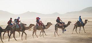 Best eco-travel Instagram to follow