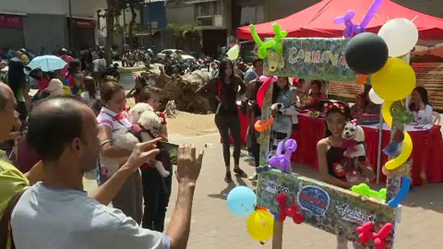 شاهد: معرضٌ لأزياء الكلاب في فنزويلا والبلاد على حافة الهاوية!