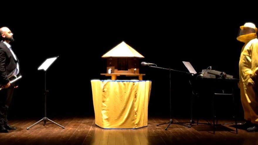 Итальянский трубач играет под аккомпанемент пчелиного улья