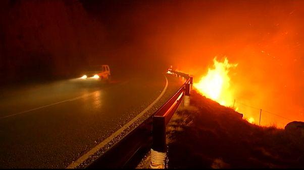 شاهد.. حرائق الغابات تستمر في اسبانيا وفرق الإنقاذ تواصل مكافحة النيران