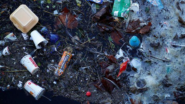 L'ultimo rapporto Wwf: basta plastica adesso