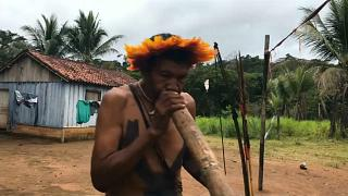 بعد تصريحات الرئيس البرازيلي الجديد ... مسلحون يهددون الأراضي النائية في الأمازون
