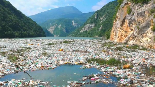 WWF alerta para a urgência de acabar com a poluição de plástico