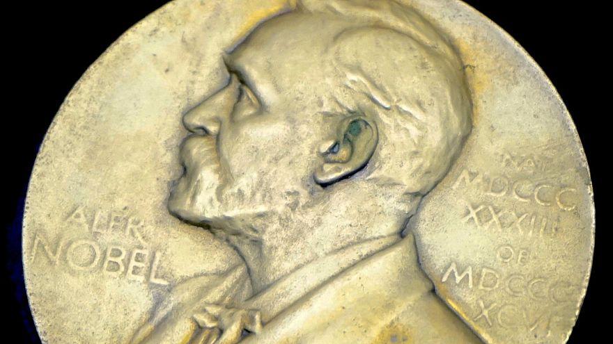 Шведская академия вручит Нобелевские премии по литературе за 2018 и 2019 годы