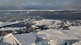 Arctic Ocean ice on Sept. 9, 2009.