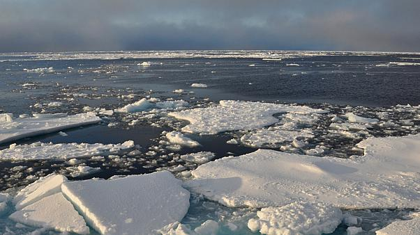 Arctic Ocean ice on Sept. 9, 2009.