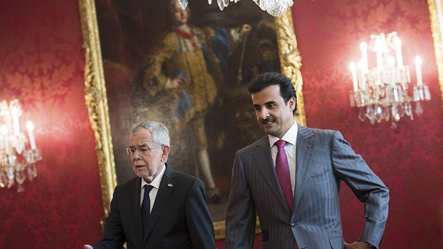 أمير دولة قطر الشيخ تميم ورئيس النمسا ألكسندر فان دير بيلين