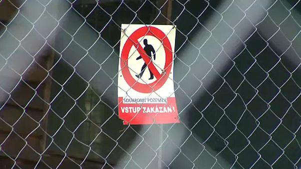 Tragikus véget ért az oroszlántartás Csehországban