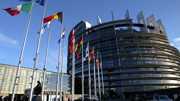 European Union member states' flags flying in front of the EP in Strasbourg