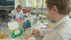 Projeto europeu usa leveduras para fabricar biomateriais