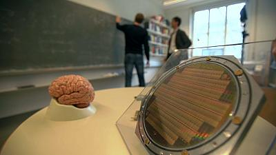The Human Brain Project: Slicing brains and thinking machines