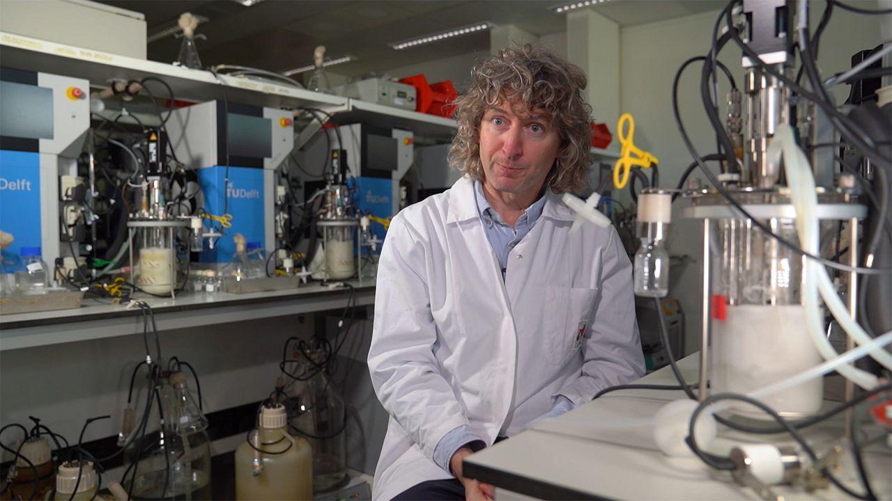 Ученые ЕС изготовят пластик из дрожжей