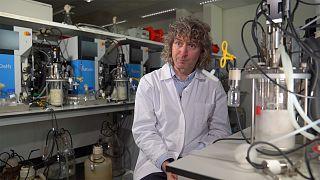 """""""Les levures ont du potentiel pour fabriquer des plastiques biodégradables"""""""