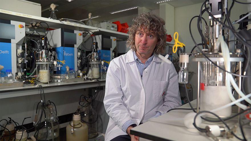 Proyecto Chassy: Cómo crear bioplástico a partir de la levadura