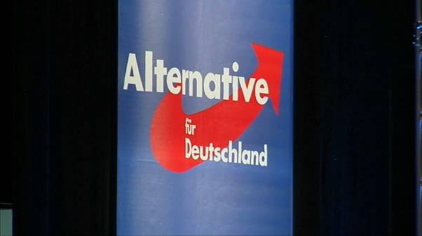 Germania: ancora guai per l'ultradestra tedesca