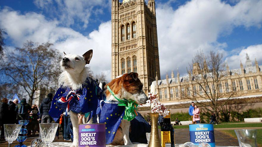 Brexit: Woche der Entscheidungen für London