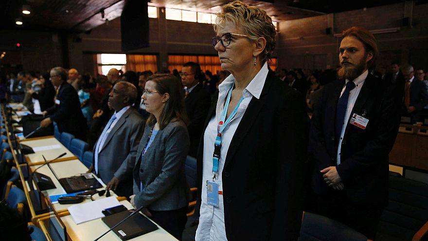 نشست برنامه محیط زیست سازمان ملل تحت تاثیر سقوط هواپیمای اتیوپی