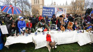Διαδήλωση σκύλων κατά του Brexit - Ζητούν δεύτερο δημοψήφισμα