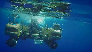 شاهد: بث مباشر من أعماق المحيط الهندي للمرة الأولى