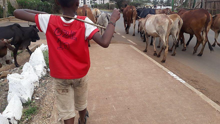 Mesut Özil'den formasını giyen Kenyalı çocuğa özel hediye