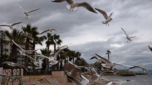 Προβλήματα στις ακτοπλοϊκές συγκοινωνίες – Βροχές, καταιγίδες και πτώση της θερμοκρασίας