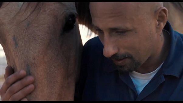 """""""The Mustang"""": redenção a galope"""