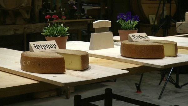 Schweizer Experiment: Ändert Musik den Geschmack von Käse?