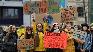 Youths demonstrate for climate change in Berlin, 15 March 2019