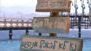 گلچین ویدئوهای هفته؛ از سواحل اسرائیل تا المپیک توکیو