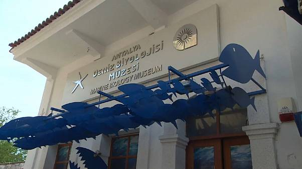 Antalya Deniz Biyoloji Müzesi