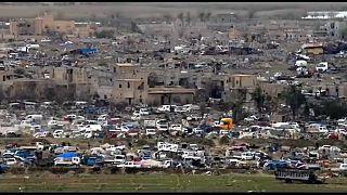 قوات سوريا الديمقراطية تضيق الخناق على داعش في الباغوز