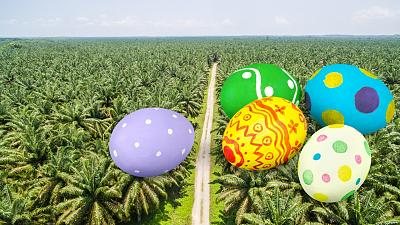 Most chocolate easter eggs contain palm oil
