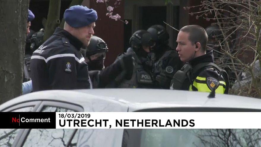 عملیات جستجوی مهاجم مسلح فراری در هلند