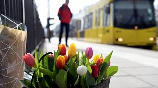 Flowers are placed at the site of a shooting in Utrecht, the Netherlands