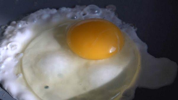 Яйца опасны для здоровья