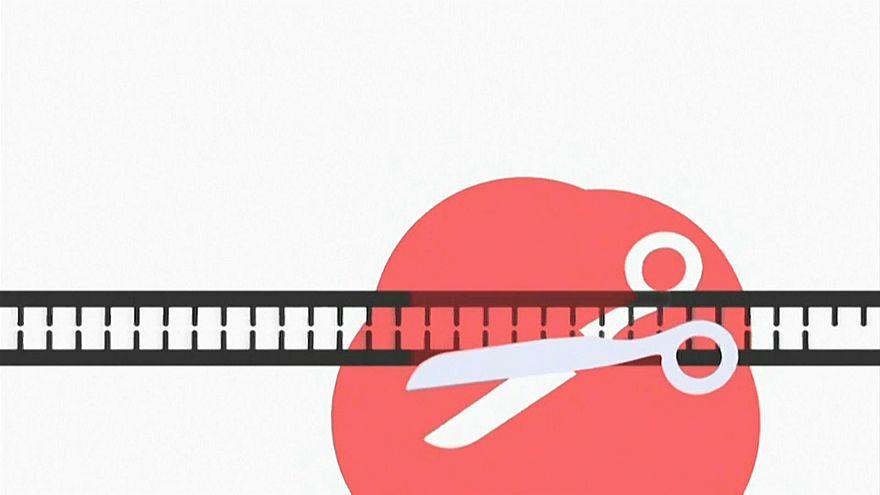 WHO will Regeln für Gen-Manipulationen beim Embryo