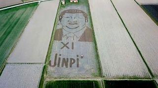 Портрет Си Цзиньпина, нарисованный трактором