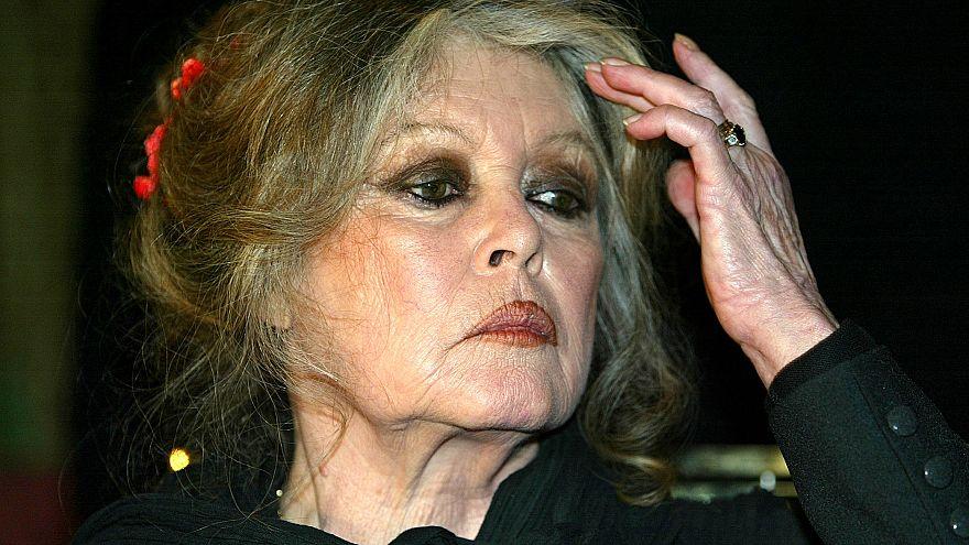Photo prétexte Brigitte Bardot : lettre raciste contre les Réunionnais.